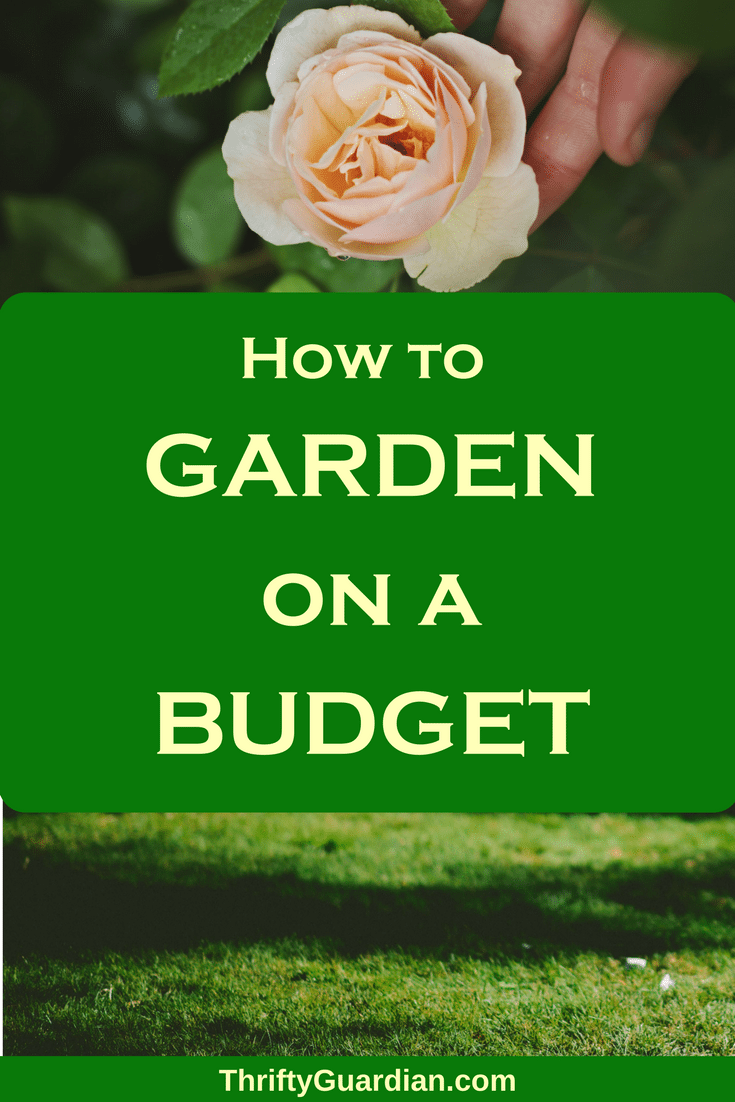 How to garden on a budget without sacrificing extra time, energy, beautiful flowers, or delicious produce! Save money when gardening!