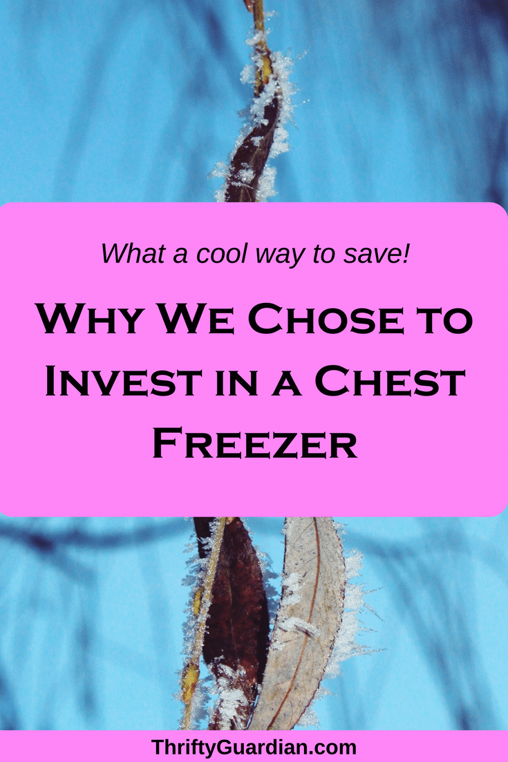 Chest freezer investment