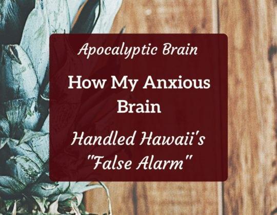 anxious mom hawaii alarm